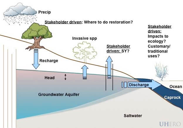 Water Management figure 1