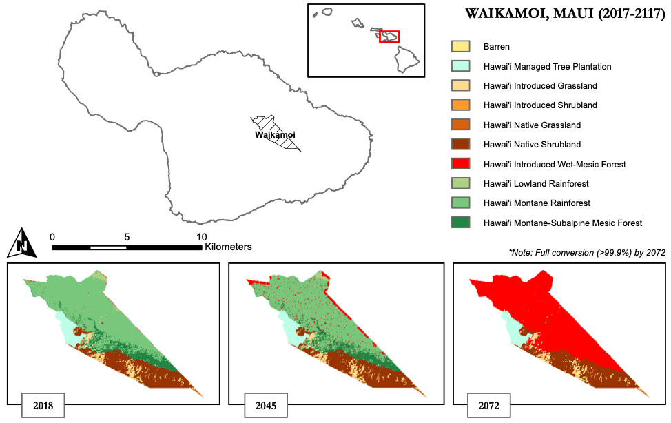 Modeled spread of non-native canopy species in Waikamoi without conservation (assuming a 10% spread).