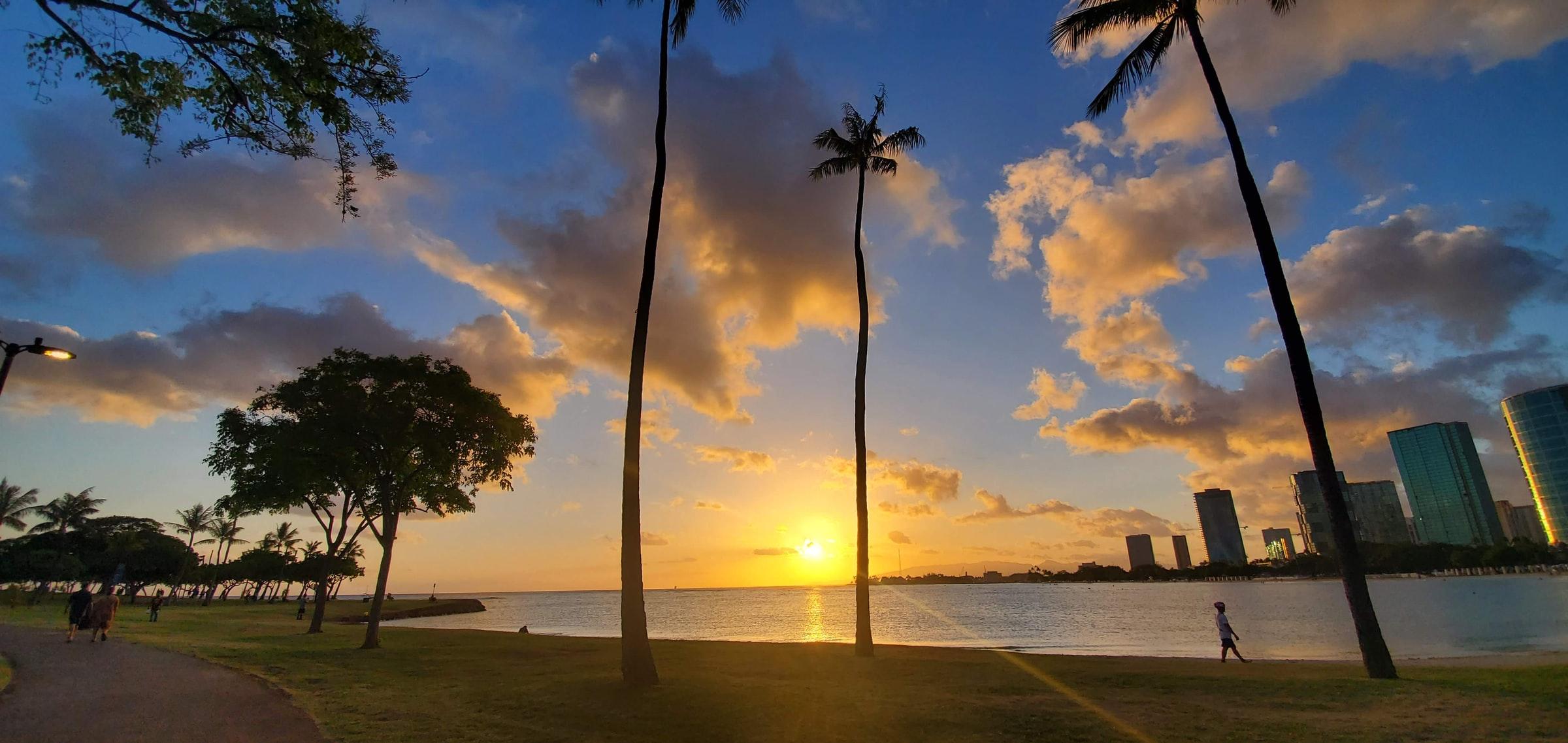 Waikiki Beach (photo by little plant from Unsplash)